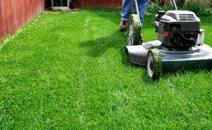 Lawn Mowing Kilburn
